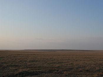Bemiškiai, atviri žole apaugę plotai įvairiose vietovėse vadinami nevienodai. Šiaurės Amerikoje prerijomis vadinamos stepės driekiasi nuo Kanados viduryje esančios Saskačevano […]