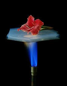 Aerogelis – medžiaga dėl savo savybių ir panaudojimo sričių vadinama stebuklinga medžiaga. Ji gali apsaugoti nuo bombų sprogimų, sugerti naftos […]