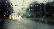 1. Daugiau nei 90 procentų lietaus iškrenta į vandenynus. 2. Lietaus lašai gali kristi iki 35 km per valandą greičiu. […]