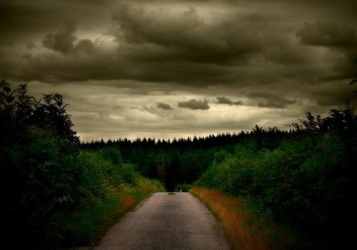 Norvegijoje kaimo keliuku važiavęs vairuotojas bandė išvengti susidūrimo su briedžiu ir partrenkė mešką. Naktį vairuotojas briedį pastebėjo kaimo kelyje netoli […]