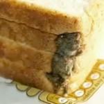 Pelė keptoje duonoje