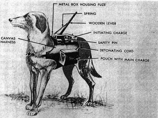 Prieštankiniai šunys