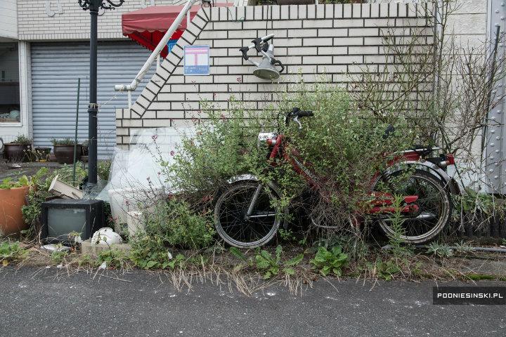 Įstrigęs motociklas krūmuose